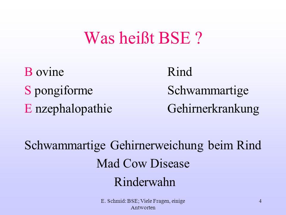 E. Schmid: BSE; Viele Fragen, einige Antworten 4 Was heißt BSE ? B ovineRind S pongiformeSchwammartige E nzephalopathieGehirnerkrankung Schwammartige
