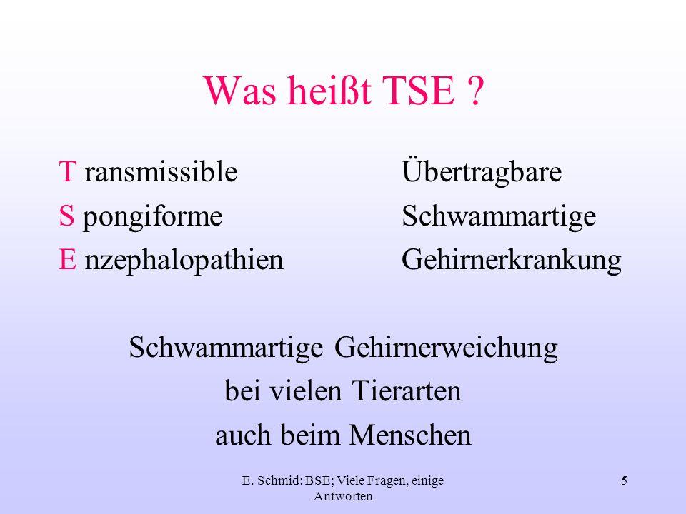E. Schmid: BSE; Viele Fragen, einige Antworten 5 Was heißt TSE ? T ransmissibleÜbertragbare S pongiformeSchwammartige E nzephalopathienGehirnerkrankun