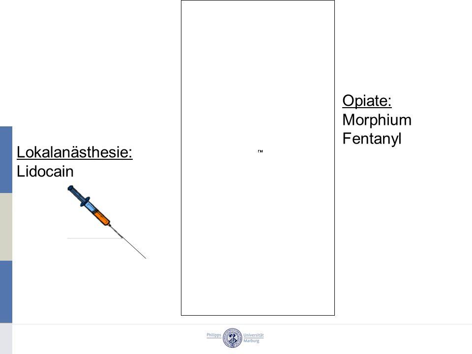 Opiate: Morphium Fentanyl Lokalanästhesie: Lidocain
