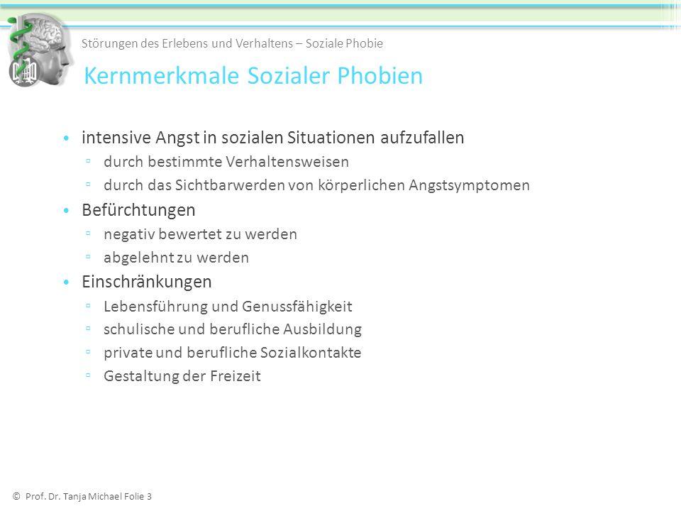 Kompetenz-Performanz-Störungsmodell Fydrich 2002b © Prof.