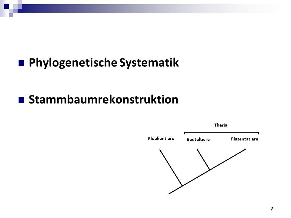 Phylogenetische Systematik Stammbaumrekonstruktion 7 Kloakentiere Beuteltiere Plazentatiere Theria
