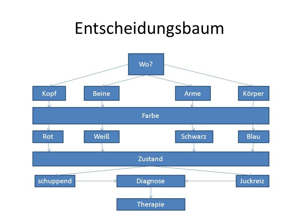 Entscheidungsbaum Wo? KopfBeineArmeKörper Farbe RotWeißSchwarzBlau Zustand schuppendJuckreizDiagnose Therapie