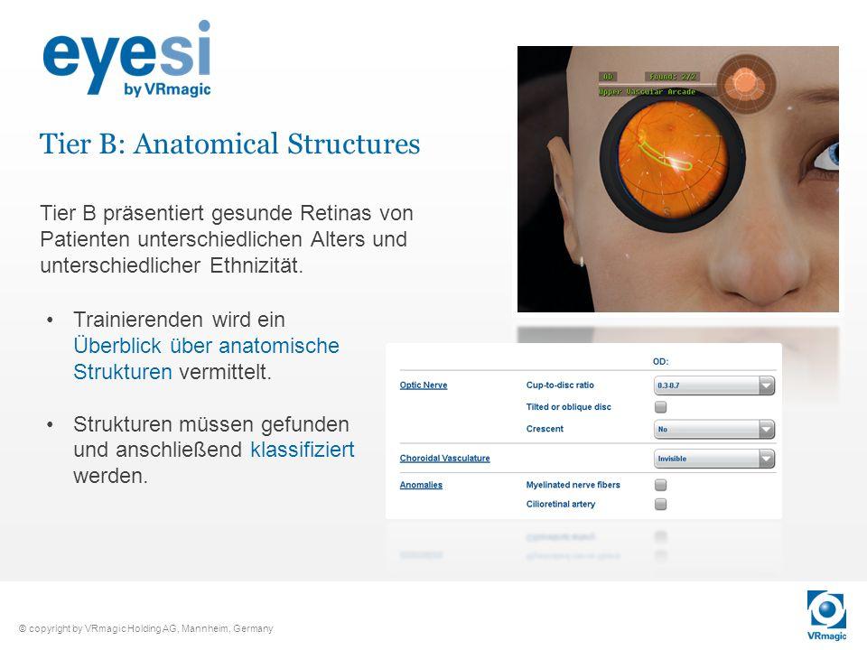 © copyright by VRmagic Holding AG, Mannheim, Germany Tier B: Anatomical Structures Trainierenden wird ein Überblick über anatomische Strukturen vermit