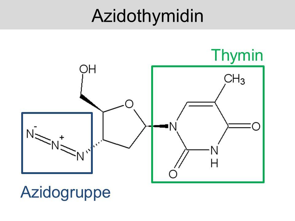 Zelluläre Kinasen Azidothymidin Azidothymidintriphosphat Azidothymidin:Wirkung
