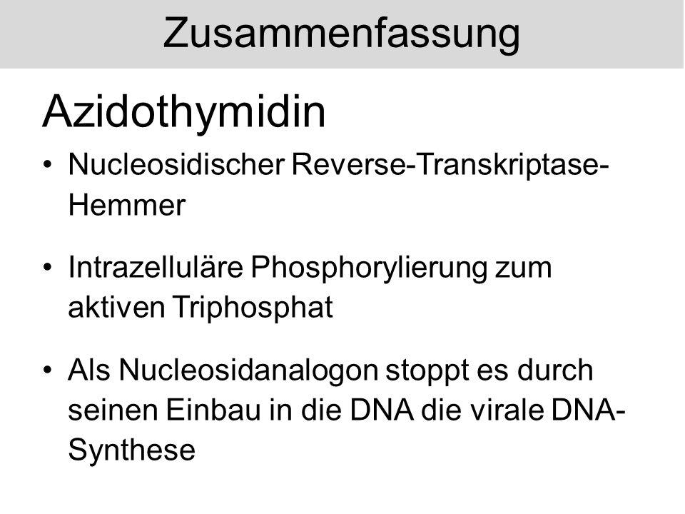 Zusammenfassung Nevirapin Nichtnucleosidischer Reverse- Transkriptase-Hemmer Bindung nahe des aktiven Zentrums der reversen Transkriptase Inaktivierung durch Konformationsänderung des Enzyms