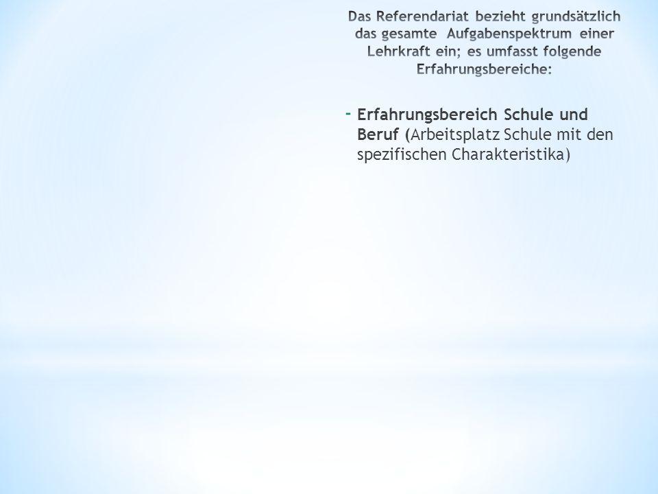 - Erfahrungsbereich Schule und Beruf (Arbeitsplatz Schule mit den spezifischen Charakteristika)