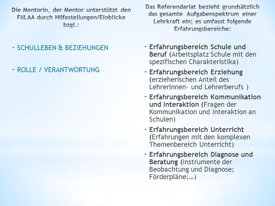 - SCHULLEBEN & BEZIEHUNGEN - ROLLE / VERANTWORTUNG - Erfahrungsbereich Schule und Beruf (Arbeitsplatz Schule mit den spezifischen Charakteristika) - E