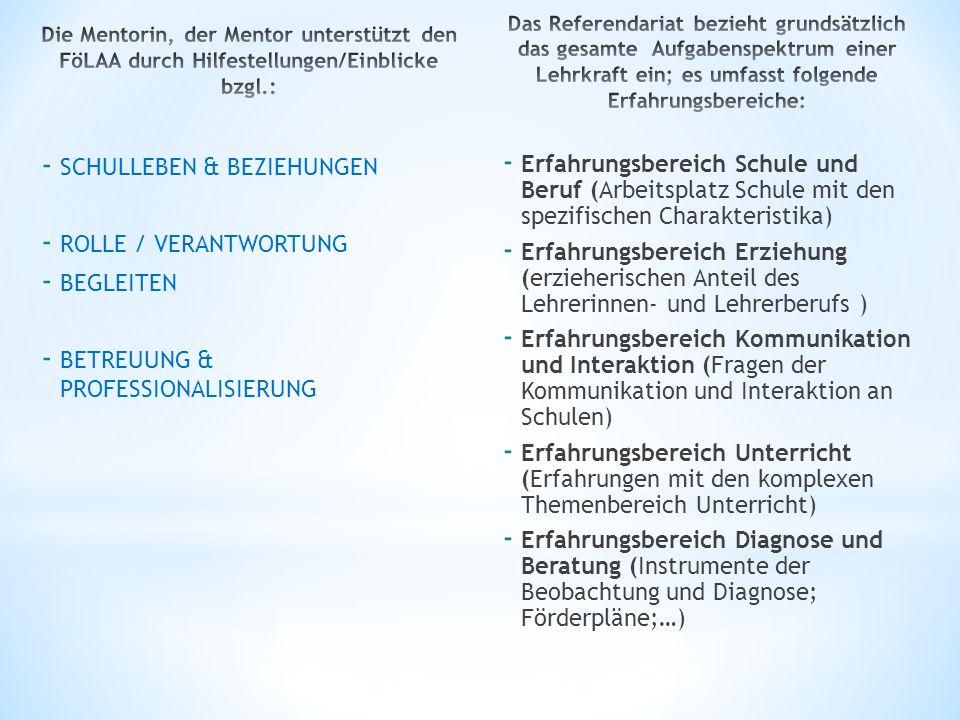 - SCHULLEBEN & BEZIEHUNGEN - ROLLE / VERANTWORTUNG - BEGLEITEN - BETREUUNG & PROFESSIONALISIERUNG - Erfahrungsbereich Schule und Beruf (Arbeitsplatz S
