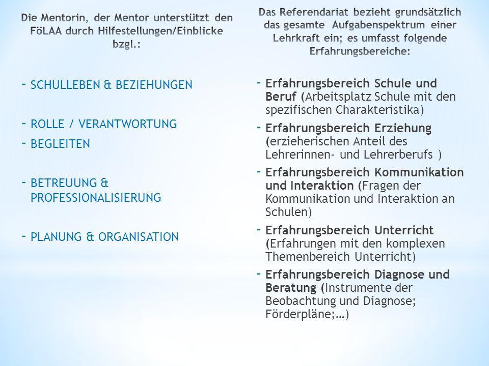 - SCHULLEBEN & BEZIEHUNGEN - ROLLE / VERANTWORTUNG - BEGLEITEN - BETREUUNG & PROFESSIONALISIERUNG - PLANUNG & ORGANISATION - Erfahrungsbereich Schule