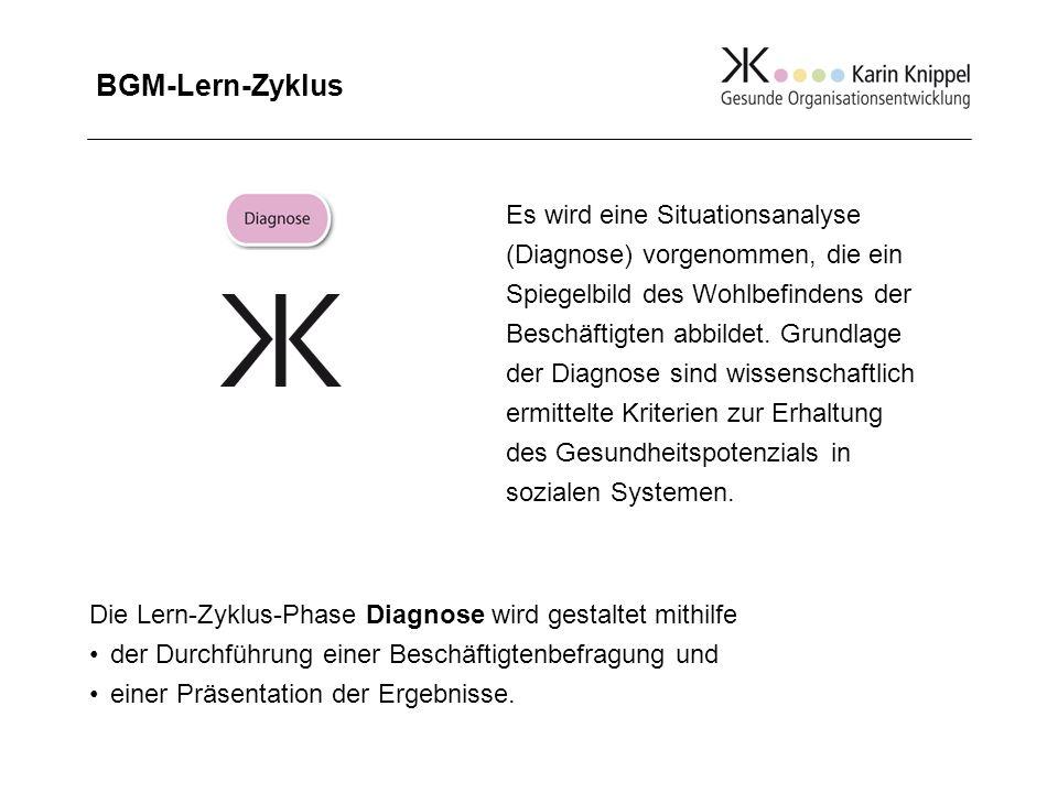 BGM-Lern-Zyklus Die Lern-Zyklus-Phase Diagnose wird gestaltet mithilfe der Durchführung einer Beschäftigtenbefragung und einer Präsentation der Ergebn