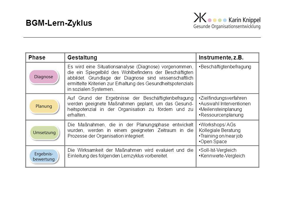 BGM-Lern-Zyklus PhaseGestaltungInstrumente, z.B. Es wird eine Situationsanalyse (Diagnose) vorgenommen, die ein Spiegelbild des Wohlbefindens der Besc