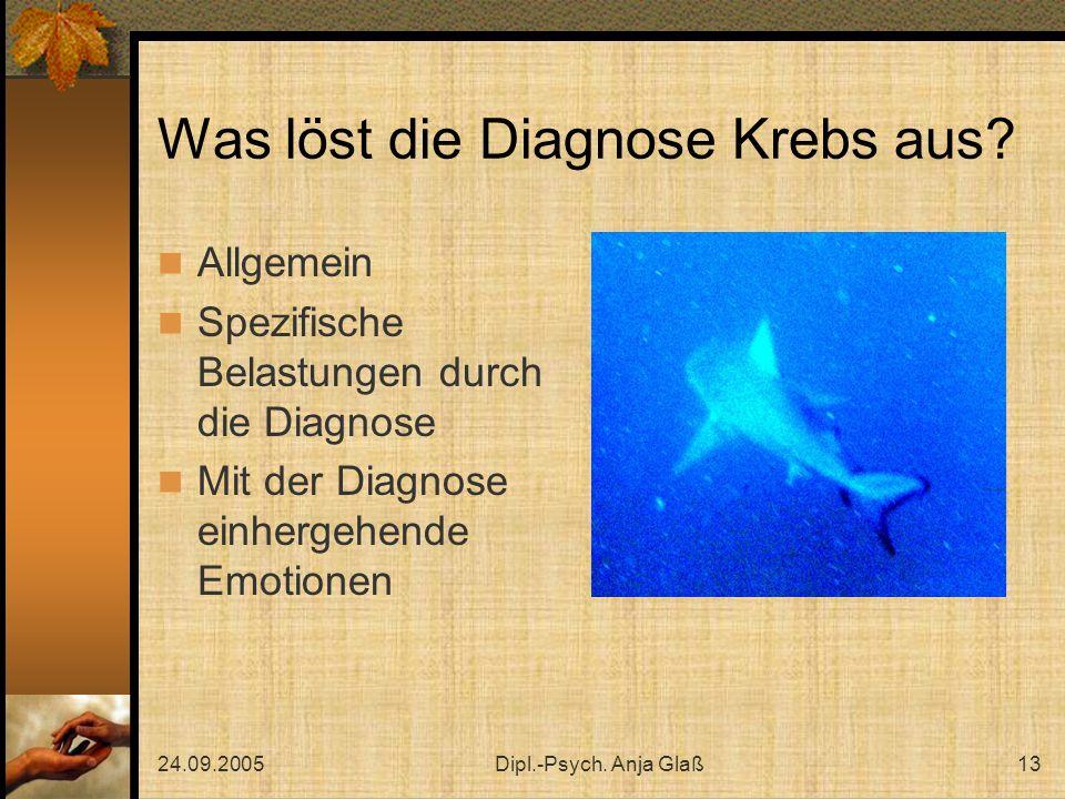 24.09.2005Dipl.-Psych.Anja Glaß13 Was löst die Diagnose Krebs aus.