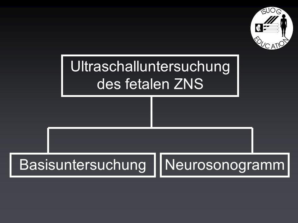 Ultraschalluntersuchung des fetalen ZNS BasisuntersuchungNeurosonogramm