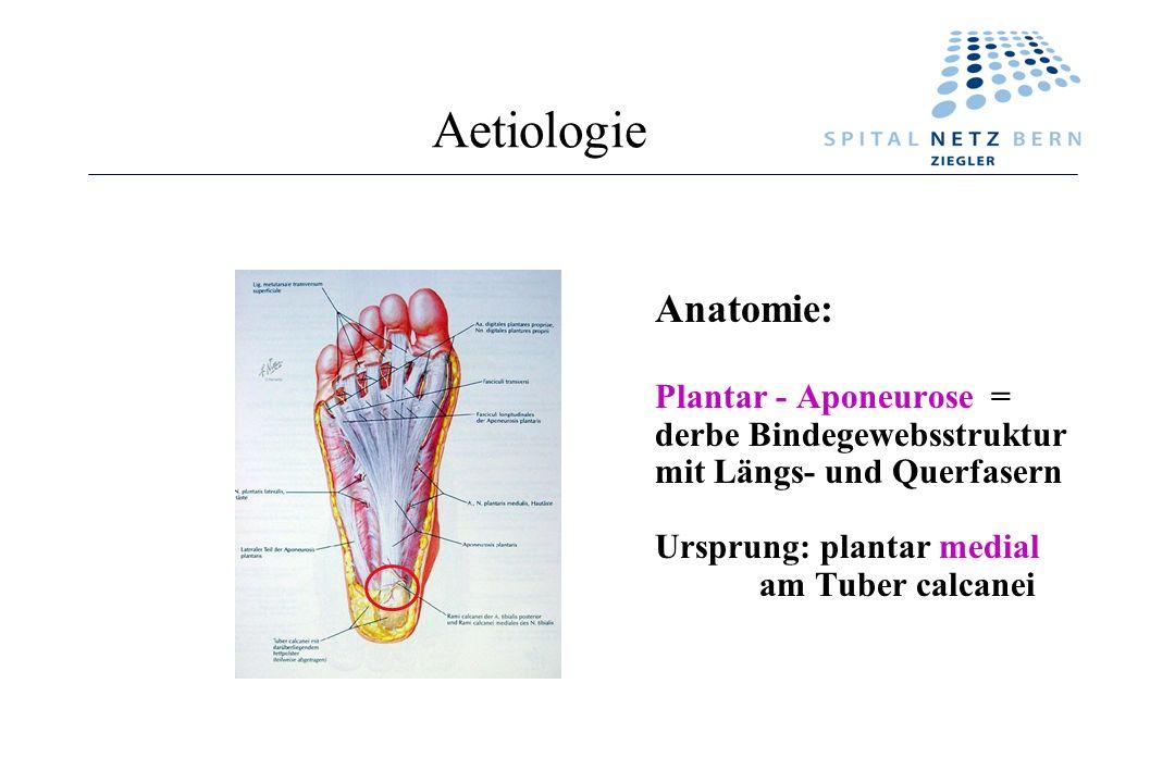 Aetiologie Anatomie: Plantar - Aponeurose = derbe Bindegewebsstruktur mit Längs- und Querfasern Ursprung: plantar medial am Tuber calcanei