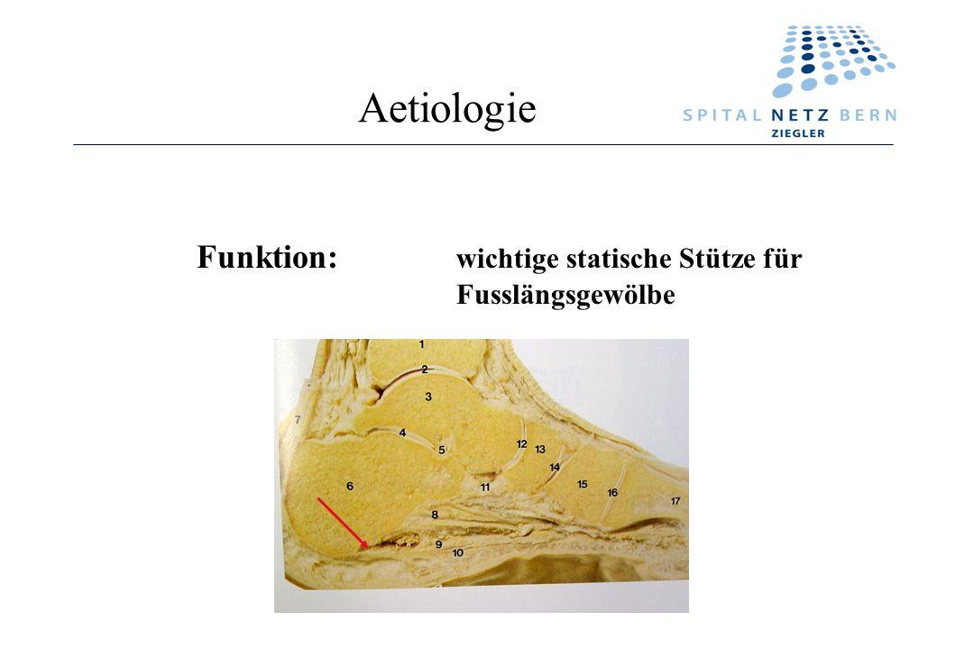 Aetiologie Funktion: wichtige statische Stütze für Fusslängsgewölbe