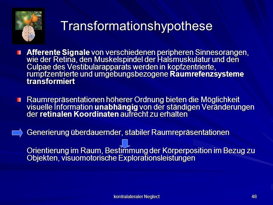 kontralateraler Neglect 48 Transformationshypothese Afferente Signale von verschiedenen peripheren Sinnesorangen, wie der Retina, den Muskelspindel de