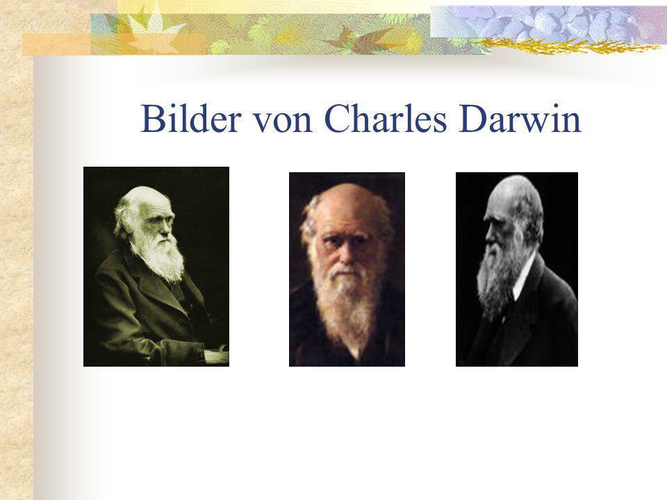 Charles Darwin * 12. Februar 1809 in Shrewsbury (Grafschaft Shropshire, England) 19. April 1882 in Down House (London-Bromley) Charles Darwin, der Beg