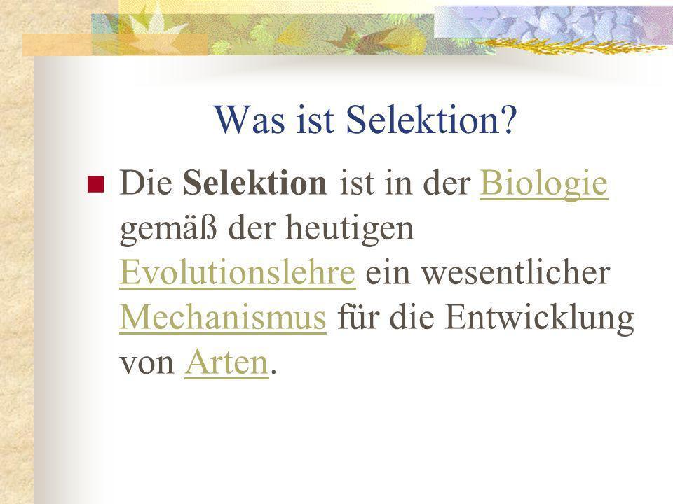 Selektion Was ist Selektion? Was ist die Grundidee von Selektion? Beispiel: Natürliche Selektion Extraseite: Charles Darwin