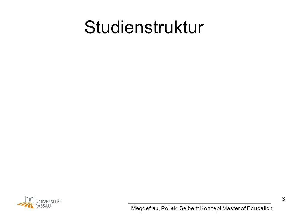 Mägdefrau, Pollak, Seibert: Konzept Master of Education 3 Studienstruktur
