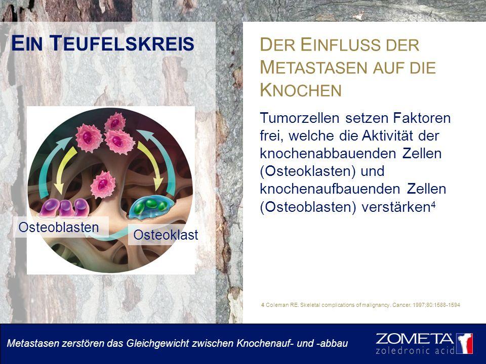 E IN T EUFELSKREIS D ER E INFLUSS DER M ETASTASEN AUF DIE K NOCHEN Tumorzellen setzen Faktoren frei, welche die Aktivität der knochenabbauenden Zellen (Osteoklasten) und knochenaufbauenden Zellen (Osteoblasten) verstärken 4 4 Coleman RE.