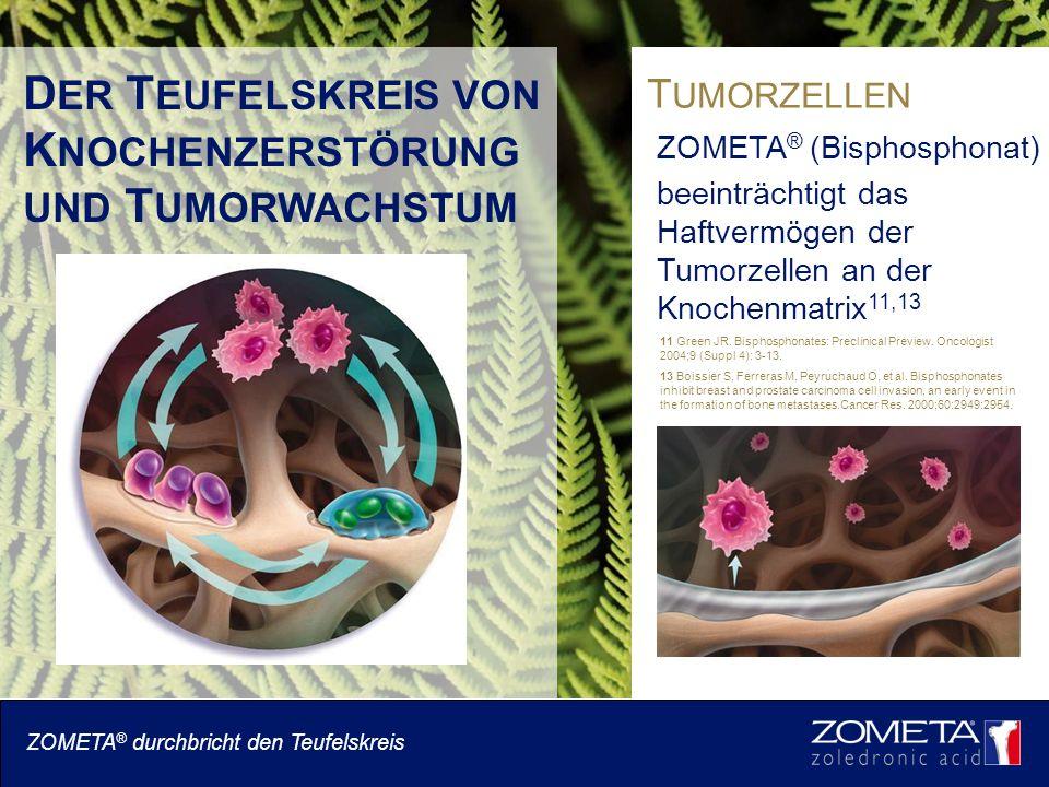 D ER T EUFELSKREIS VON K NOCHENZERSTÖRUNG UND T UMORWACHSTUM T UMORZELLEN ZOMETA ® (Bisphosphonat) beeinträchtigt das Haftvermögen der Tumorzellen an der Knochenmatrix 11,13 ZOMETA ® durchbricht den Teufelskreis 11 Green JR.