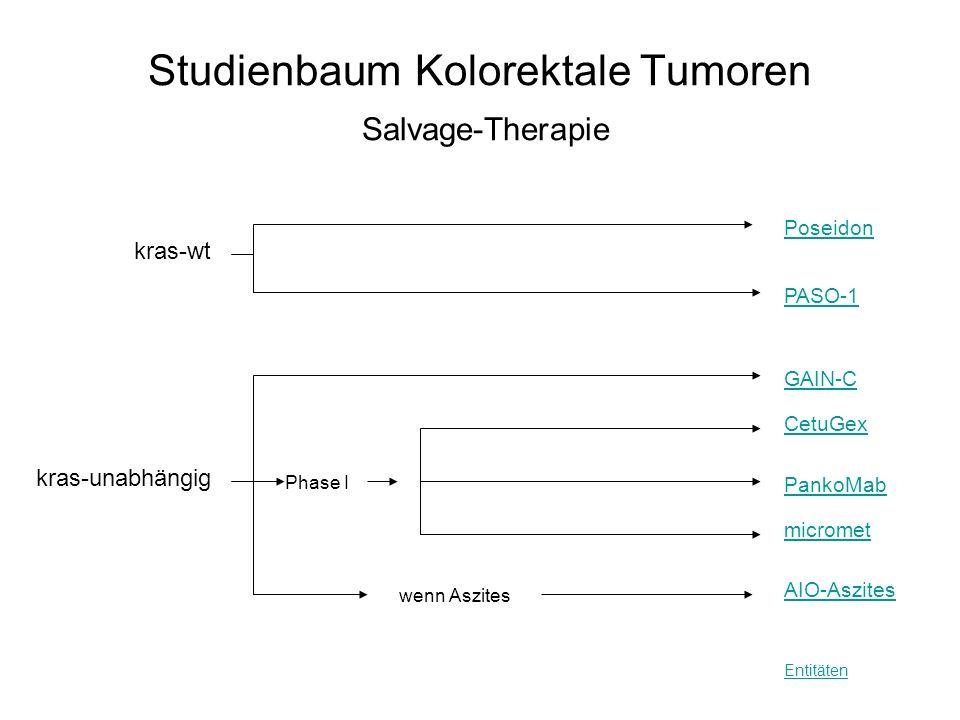 Studienbaum Kolorektale Tumoren Salvage-Therapie Entitäten PASO-1 wenn Aszites kras-wt Poseidon CetuGex kras-unabhängig GAIN-C micromet PankoMab AIO-A