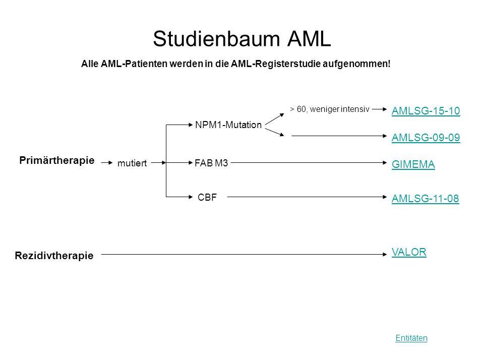 Studienbaum AML Entitäten GIMEMA NPM1-Mutation > 60, weniger intensiv Alle AML-Patienten werden in die AML-Registerstudie aufgenommen! Primärtherapie