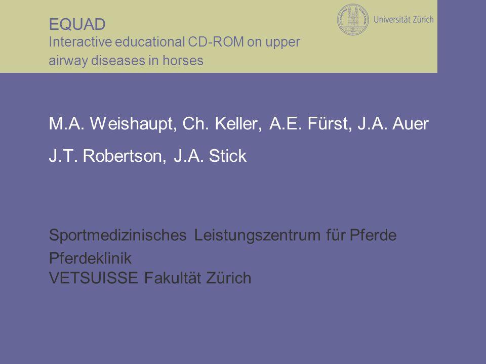 Sportmedizinisches Leistungszentrum für Pferde Pferdeklinik VETSUISSE Fakultät Zürich EQUAD Interactive educational CD-ROM on upper airway diseases in horses M.A.