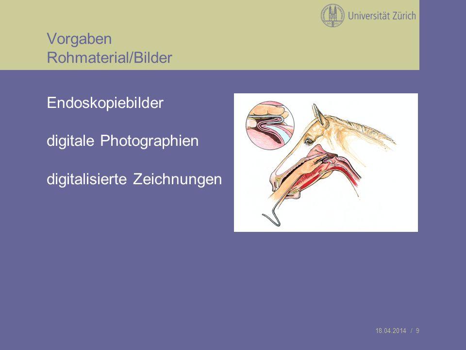 18.04.2014 / 9 Vorgaben Rohmaterial/Bilder Endoskopiebilder digitale Photographien digitalisierte Zeichnungen