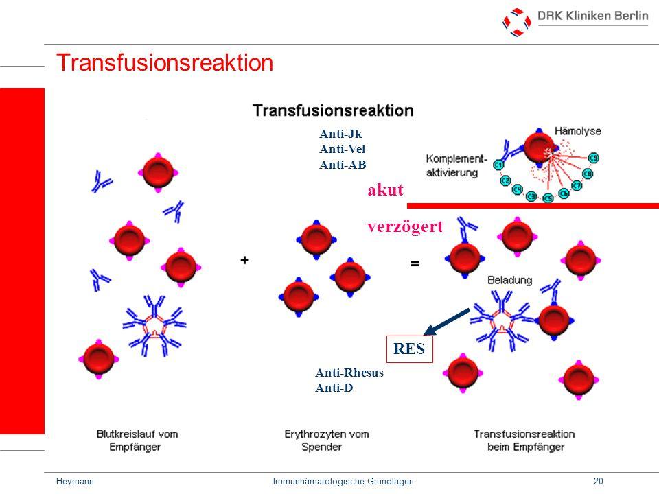 HeymannImmunhämatologische Grundlagen20 Transfusionsreaktion RES Anti-Jk Anti-Vel Anti-AB Anti-Rhesus Anti-D akut verzögert