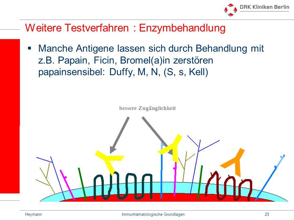 HeymannImmunhämatologische Grundlagen25 Weitere Testverfahren : Enzymbehandlung Manche Antigene lassen sich durch Behandlung mit z.B. Papain, Ficin, B