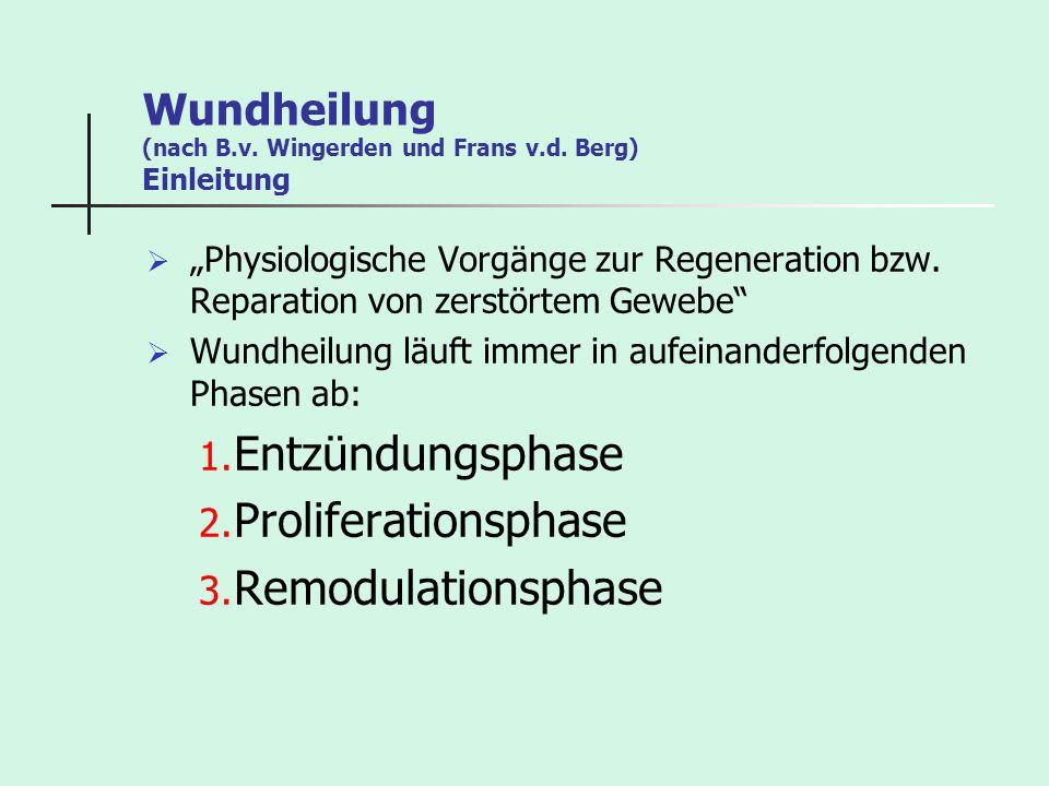 Wundheilung (nach B.v. Wingerden und Frans v.d. Berg) Einleitung Physiologische Vorgänge zur Regeneration bzw. Reparation von zerstörtem Gewebe Wundhe