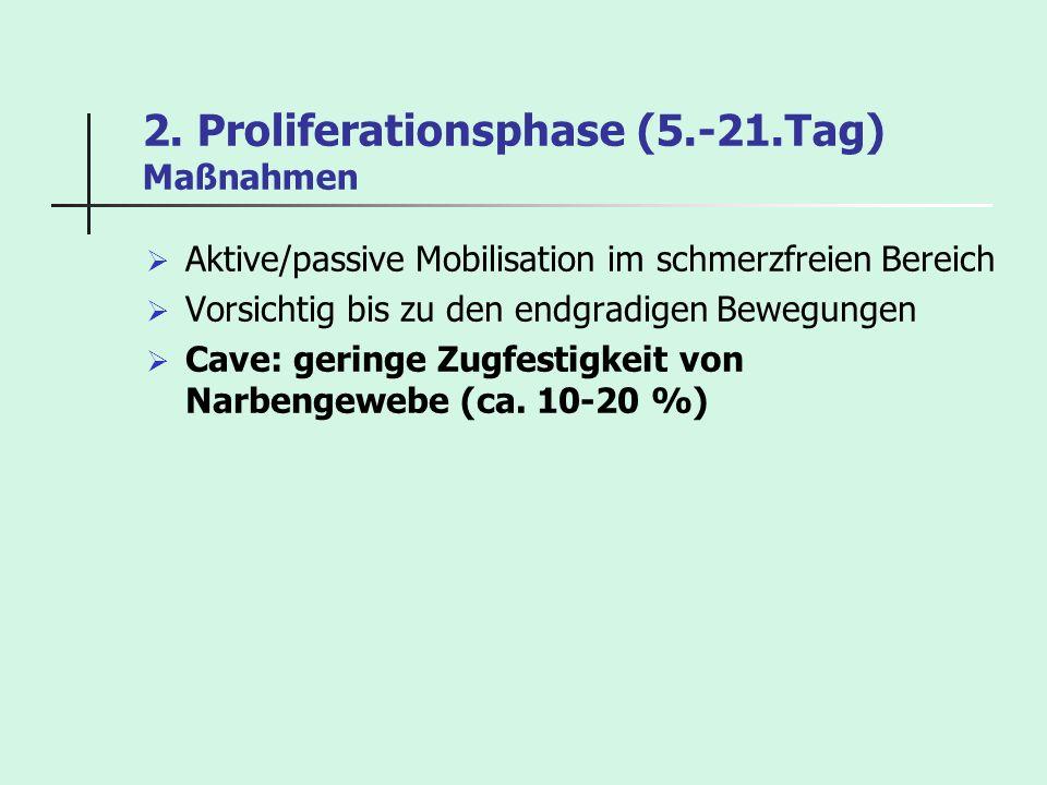 2. Proliferationsphase (5.-21.Tag) Maßnahmen Aktive/passive Mobilisation im schmerzfreien Bereich Vorsichtig bis zu den endgradigen Bewegungen Cave: g