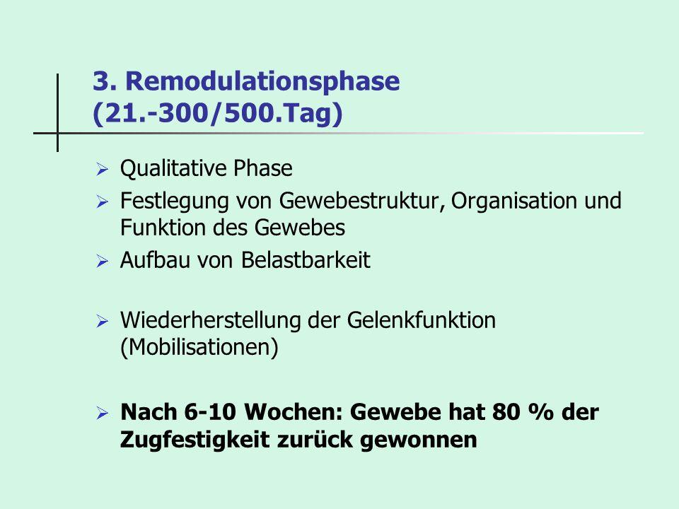 3. Remodulationsphase (21.-300/500.Tag) Qualitative Phase Festlegung von Gewebestruktur, Organisation und Funktion des Gewebes Aufbau von Belastbarkei