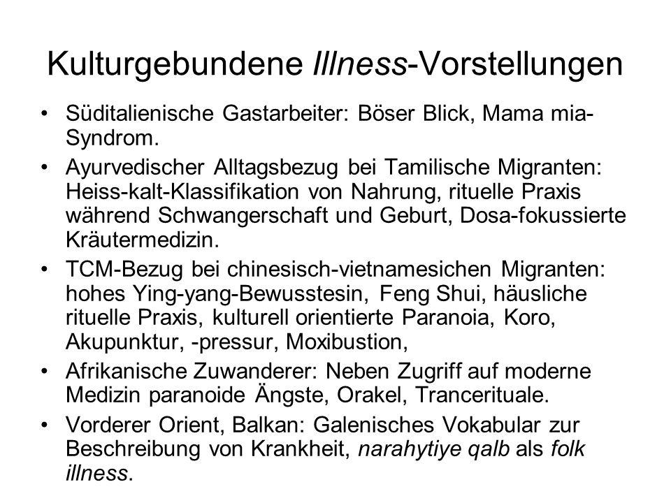 Kulturgebundene Illness-Vorstellungen Süditalienische Gastarbeiter: Böser Blick, Mama mia- Syndrom. Ayurvedischer Alltagsbezug bei Tamilische Migrante