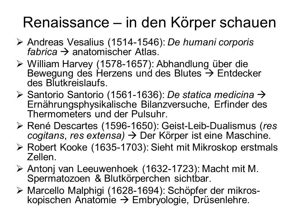 Renaissance – in den Körper schauen Andreas Vesalius (1514-1546): De humani corporis fabrica anatomischer Atlas. William Harvey (1578-1657): Abhandlun