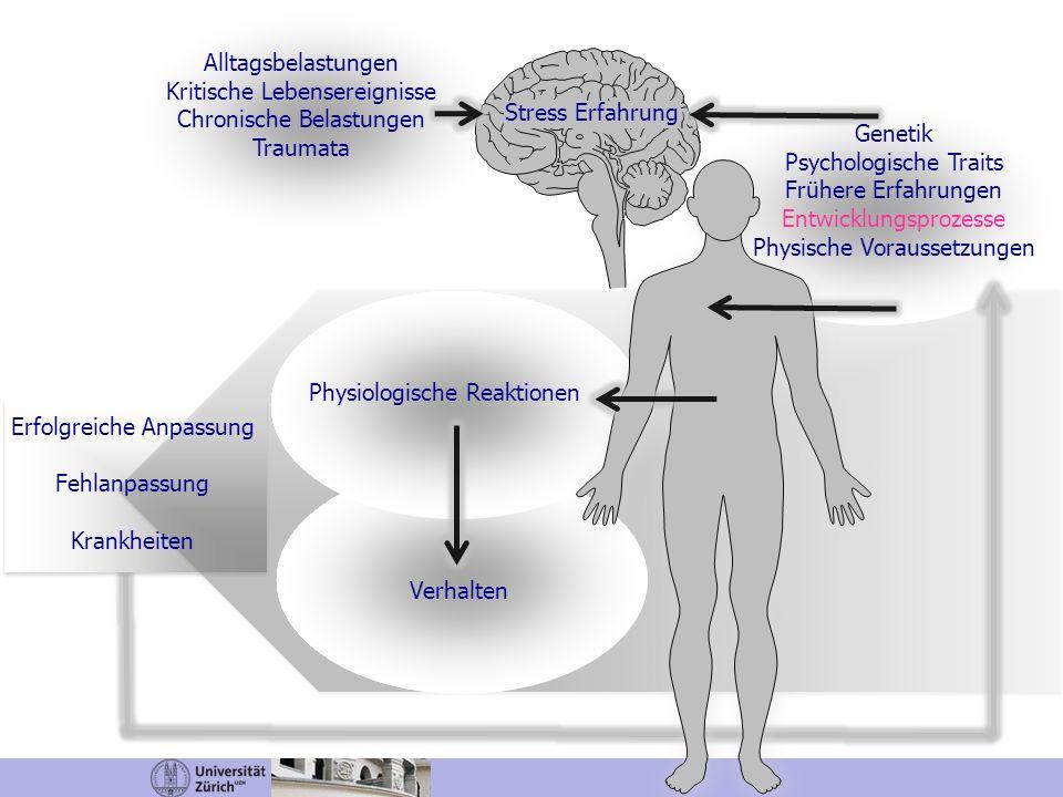 Alltagsbelastungen Kritische Lebensereignisse Chronische Belastungen Traumata Stress Erfahrung Genetik Psychologische Traits Frühere Erfahrungen Entwi