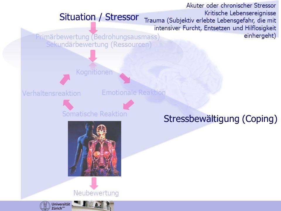 Situation / Stressor Primärbewertung (Bedrohungsausmass) Sekundärbewertung (Ressourcen) Kognitionen Emotionale Reaktion Somatische Reaktion Verhaltens