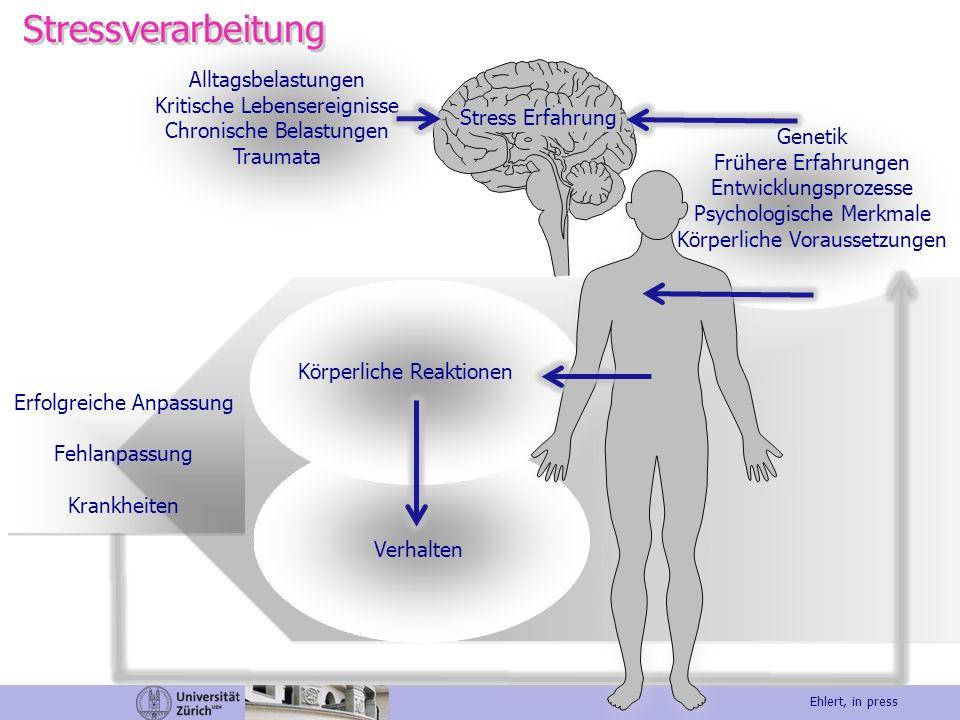 Alltagsbelastungen Kritische Lebensereignisse Chronische Belastungen Traumata Stress Erfahrung Genetik Frühere Erfahrungen Entwicklungsprozesse Psycho