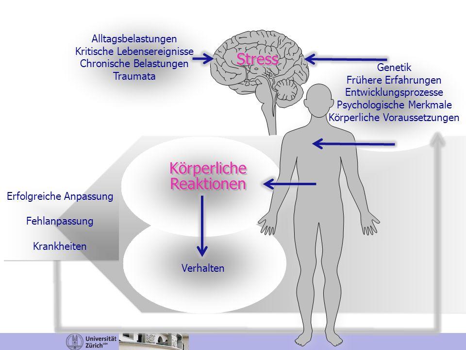 Alltagsbelastungen Kritische Lebensereignisse Chronische Belastungen Traumata Stress Genetik Frühere Erfahrungen Entwicklungsprozesse Psychologische M