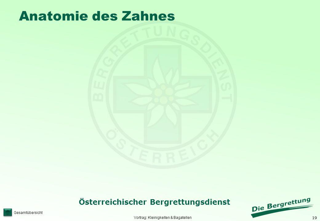 19 Österreichischer Bergrettungsdienst Gesamtübersicht Anatomie des Zahnes Vortrag: Kleinigkeiten & Bagatellen