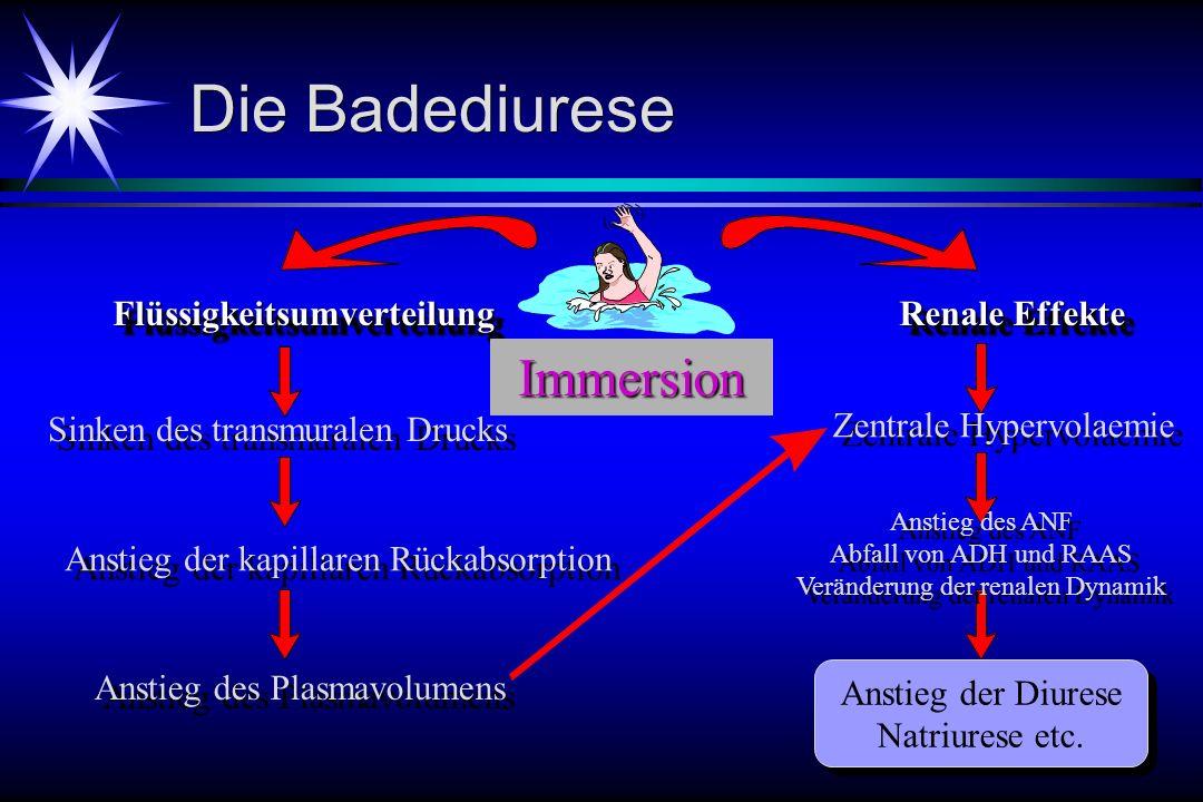 Baln 10 Die Badediurese FlüssigkeitsumverteilungFlüssigkeitsumverteilung Renale Effekte Immersion Sinken des transmuralen Drucks Anstieg der kapillare