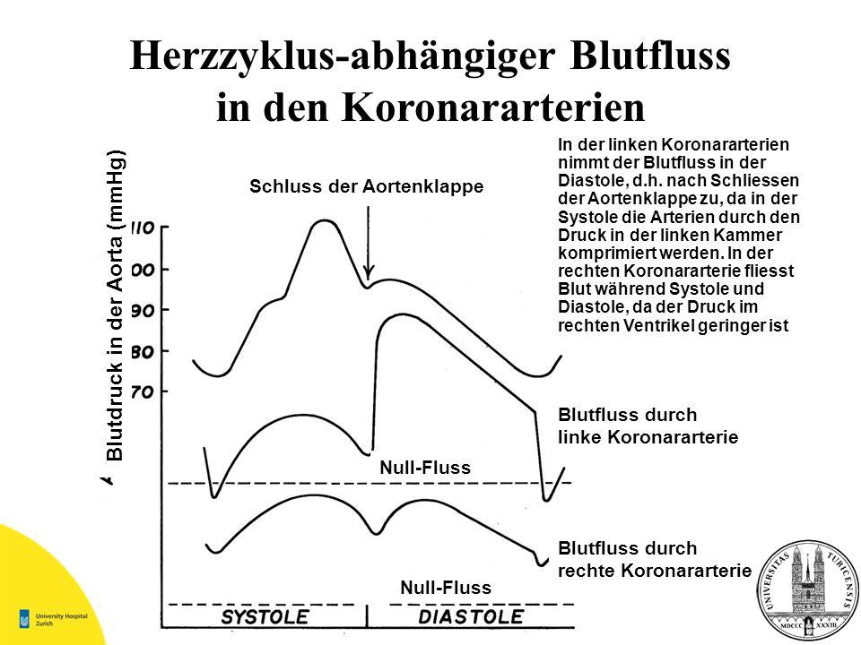 Herzzyklus-abhängiger Blutfluss in den Koronararterien Blutdruck in der Aorta (mmHg) Schluss der Aortenklappe Blutfluss durch linke Koronararterie Blu