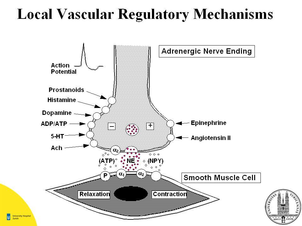 Ursachen von Synkopen Inadäquater Gefässtonus Hypovolämie Verminderter venöser Rückfluss Vermindertes Herzminuten- volumen Herzrhythmusstörungen