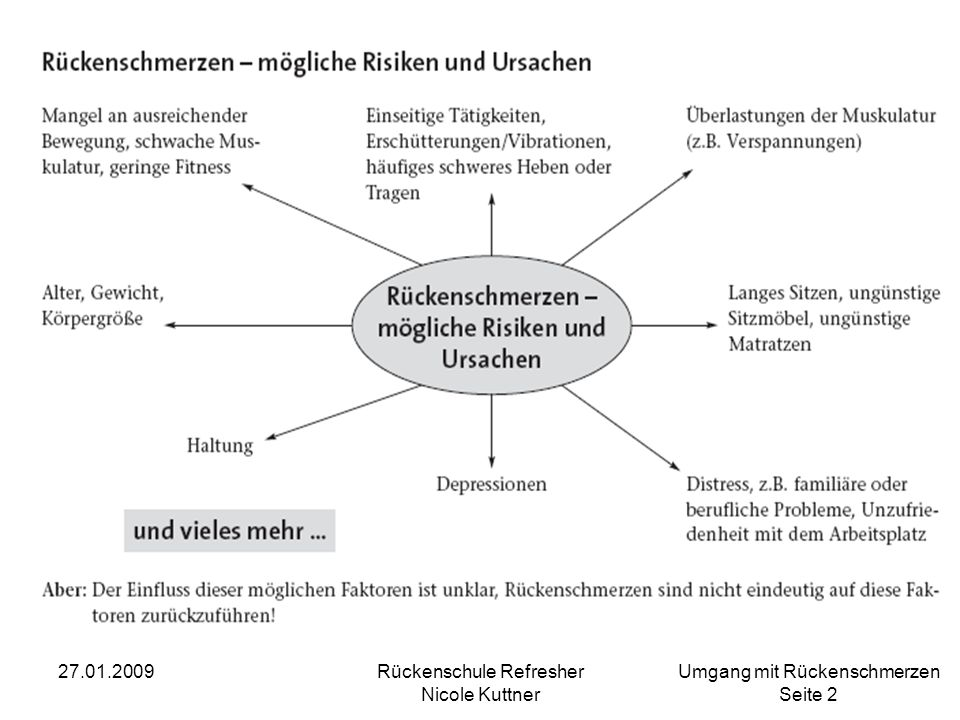 Umgang mit Rückenschmerzen Seite 3 27.01.2009Rückenschule Refresher Nicole Kuttner Ursachen und Risikofaktoren für Rückenschmerz … und: Sog.