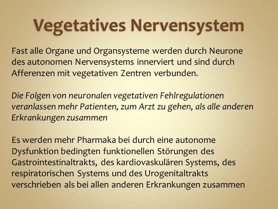 Fast alle Organe und Organsysteme werden durch Neurone des autonomen Nervensystems innerviert und sind durch Afferenzen mit vegetativen Zentren verbunden.