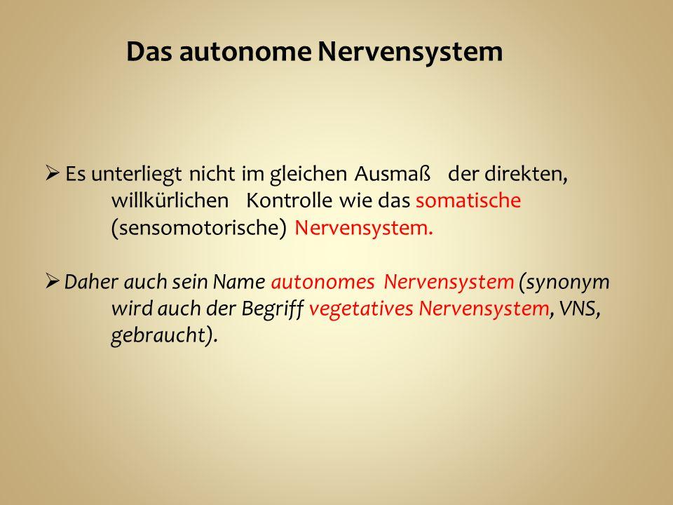 Es unterliegt nicht im gleichen Ausmaß der direkten, willkürlichen Kontrolle wie das somatische (sensomotorische) Nervensystem.