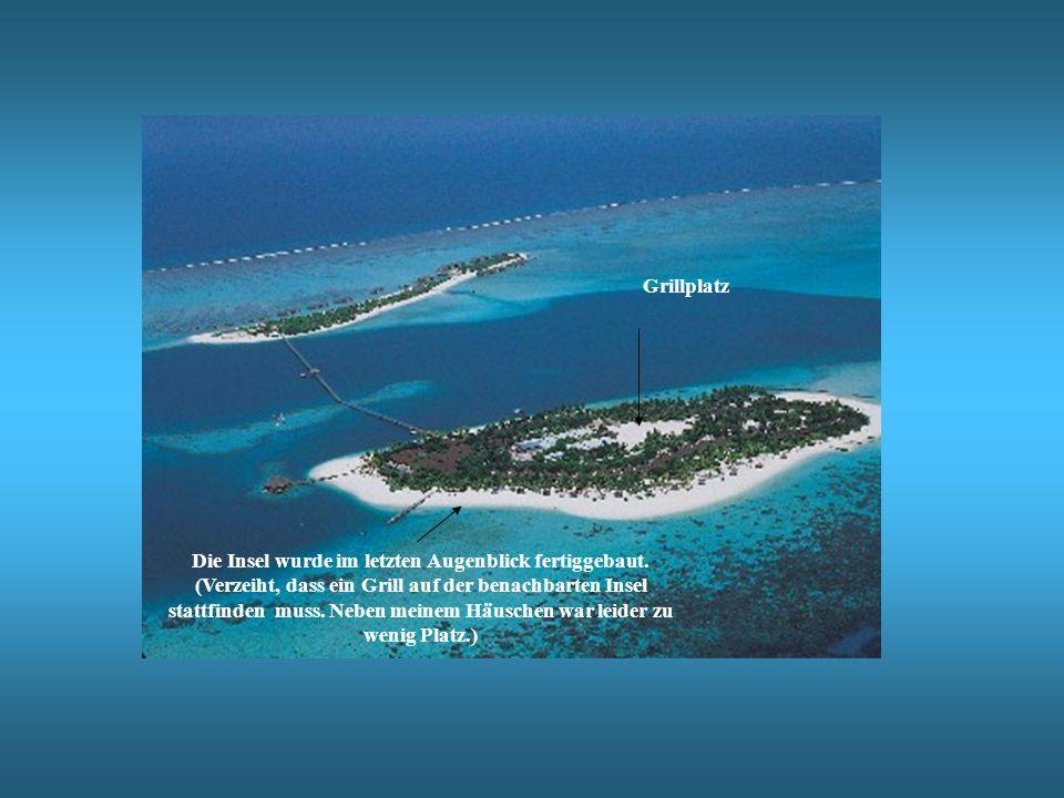 Die Insel wurde im letzten Augenblick fertiggebaut. (Verzeiht, dass ein Grill auf der benachbarten Insel stattfinden muss. Neben meinem Häuschen war l