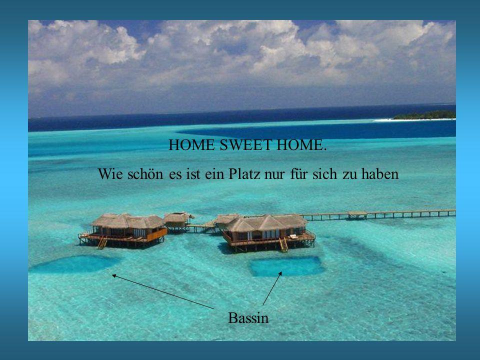 HOME SWEET HOME. Wie schön es ist ein Platz nur für sich zu haben Bassin