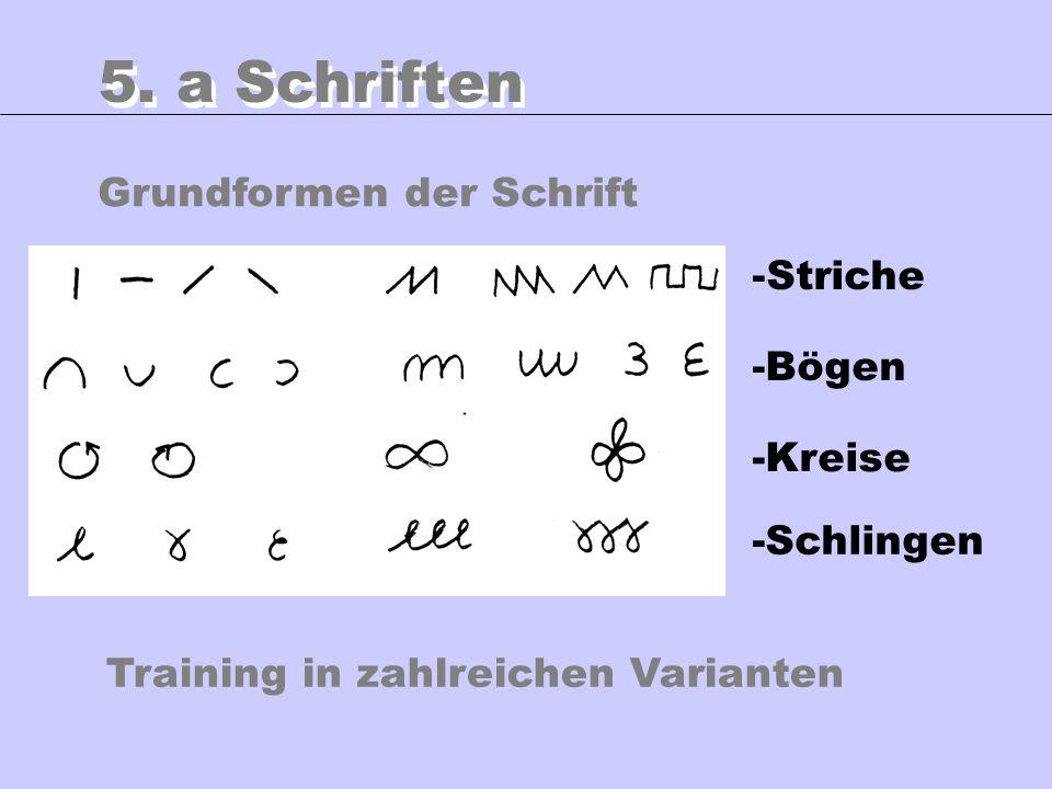 Grundformen der Schrift 5. a Schriften -Striche -Bögen -Kreise -Schlingen Training in zahlreichen Varianten
